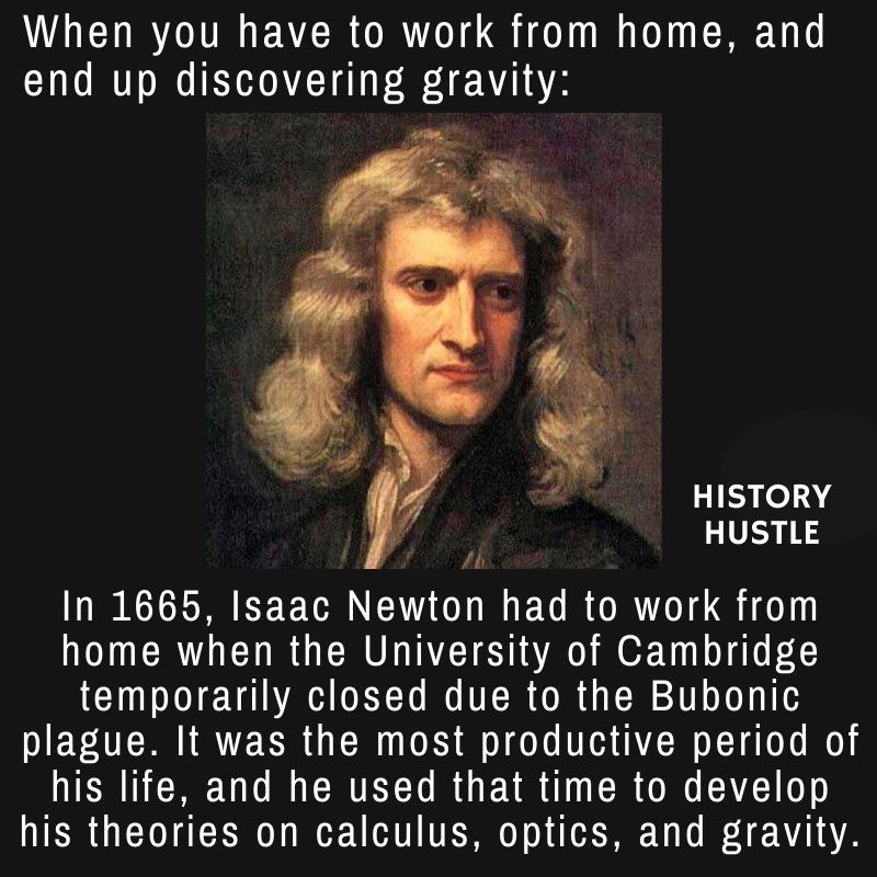History Hustle Newton plague fact